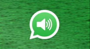 How to record a WhatsApp call
